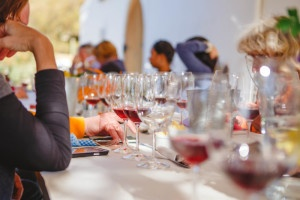 David Nadia Wines Paardebosch tasting & lunch
